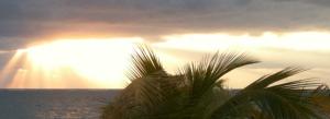 Sunrise Cayman